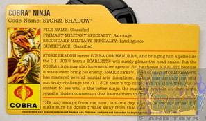 Storm Shaow File Card